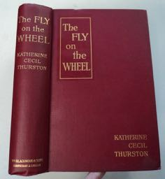 The Fly on the Wheel. Katherine Cecil THURSTON.