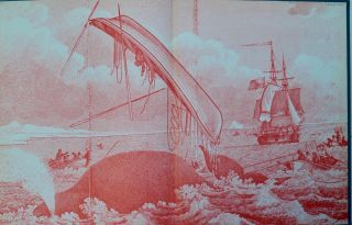 A Five Years' Whaling Voyage 1848-1853