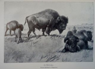American Big-Game Hunting: The Book of the Boone and Crockett Club