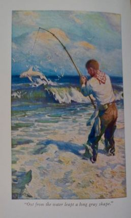 The Call of the Surf