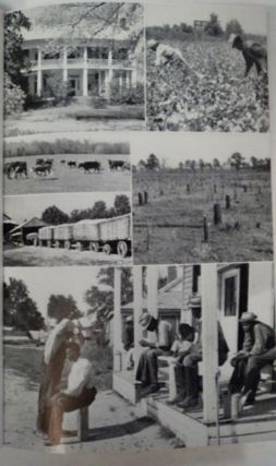 Black Belt County: Rural Government in the Cotton Country of Alabama
