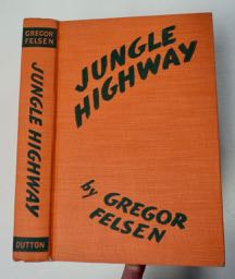 Jungle Highway: Three Young Americans Meet Adventure in the Building of the Pan American Highway